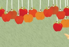 Focus on the Low-Hanging Fruit